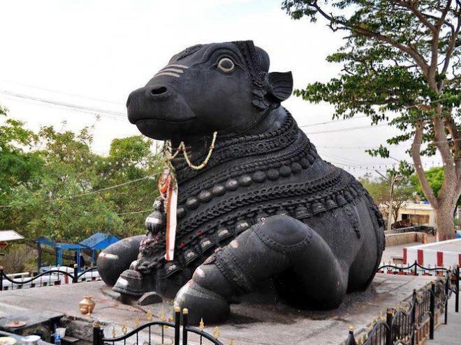 Bangalore - Mysore - Ooty - Coorg