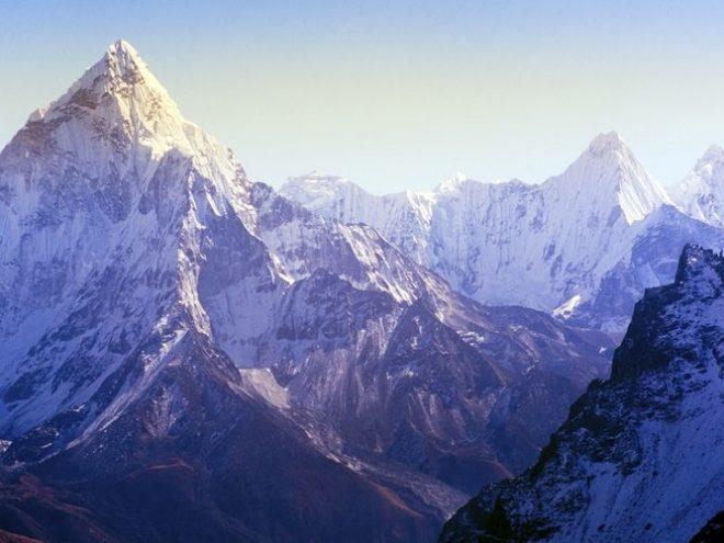Himalayan Woods