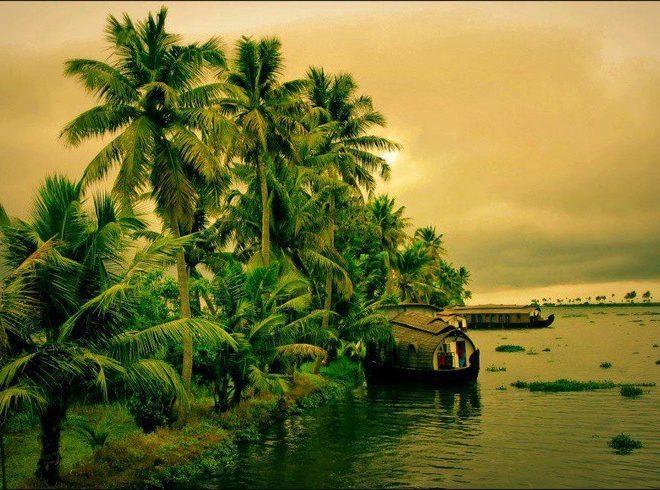 Munnar & Thekkady