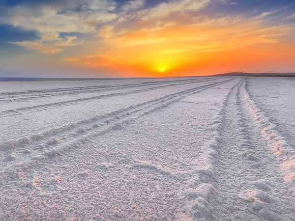Rann of Kutch (Nov & Feb)