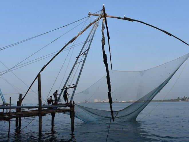 Cochin - Munnar - Thekkady